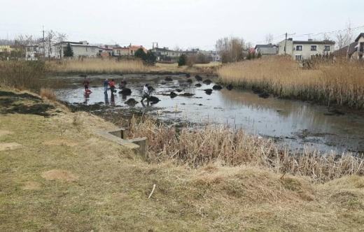 Odtworzenie zbiornika wodnego przy ulicy Grobla w Kobylinie