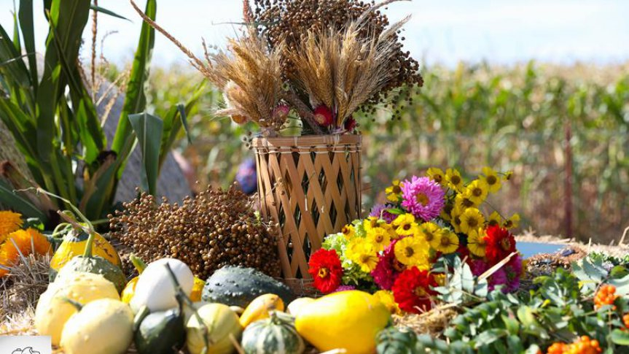 Dożynki wiejskie sołectw Smolice i Zdziętawy