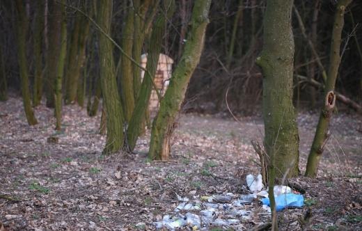 śmieci przy pomniku w lasku starokobylińskim